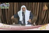 ( ولا تقربوا الزنى 4 )( 25/12/2018)  آيات الأحكام