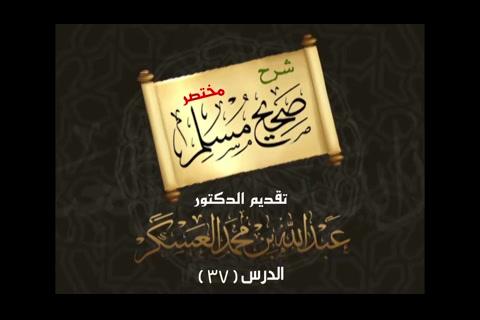 (37) الحديث 186 باب غسل البول من المسجد - شرح مختصر صحيح مسلم