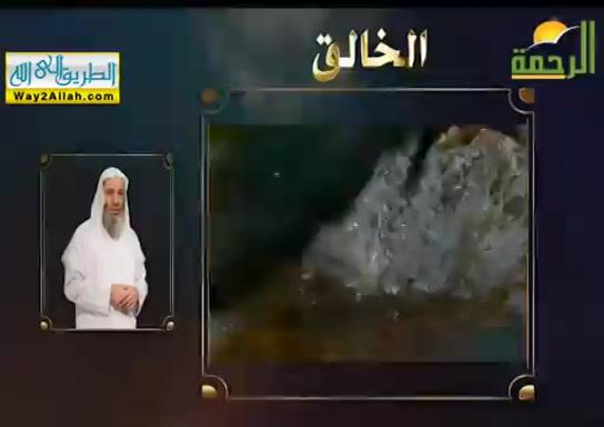 الخالق(15/5/2019)خواطراسماءاللهالحسنى