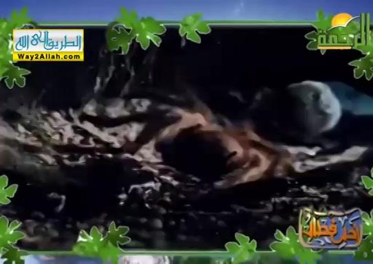 الاحسان(19/5/2019)احلىفطار