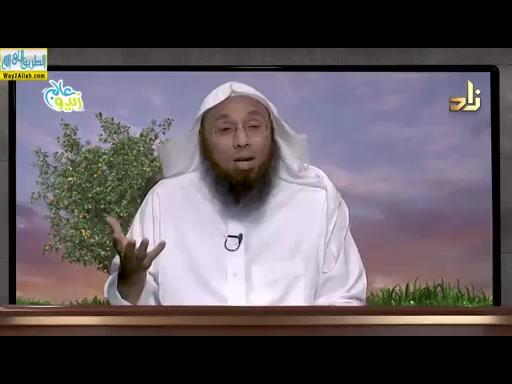 توحيد الالوهيه ( 13/5/2019 ) التربيه العقيديه