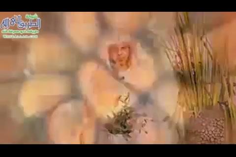 الحلقةالرابعةعشر-معحباتالرطب