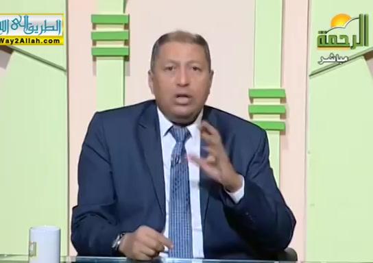 اسبابالشجاربينالاطفال2(29/11/2019)فنالتربيه