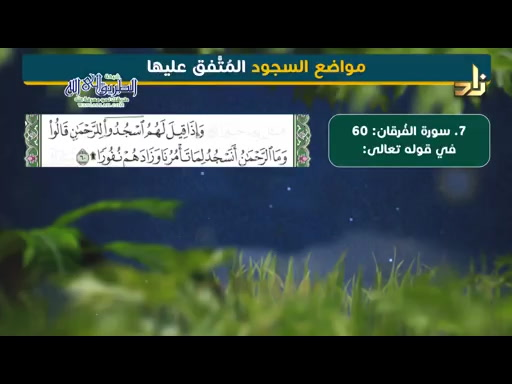 سجود التلاوة وسجود الشكر (24/10/2019 ) فقه العبادات