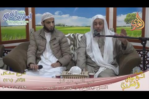 (46) النهي عن قتل النمل والنحل والهدهد والصرد (19/2/2020) شرح مشكل الآثار
