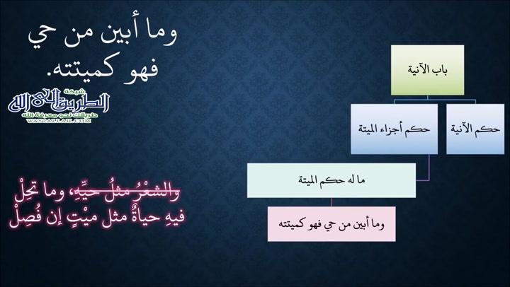 8-بابالآنية2-أحكامدخولالخلاء1(ملحالنادفينظمالزاد)