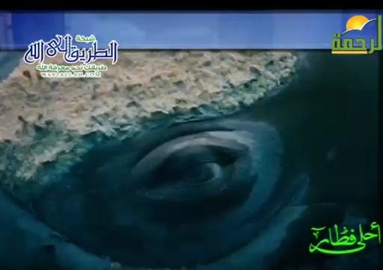 وليمة الحيتان الحدباء ( 30/4/2020 ) احلى فطار