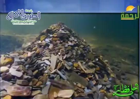 السمك البلاء ( 12/5/2020 ) احلى فطار
