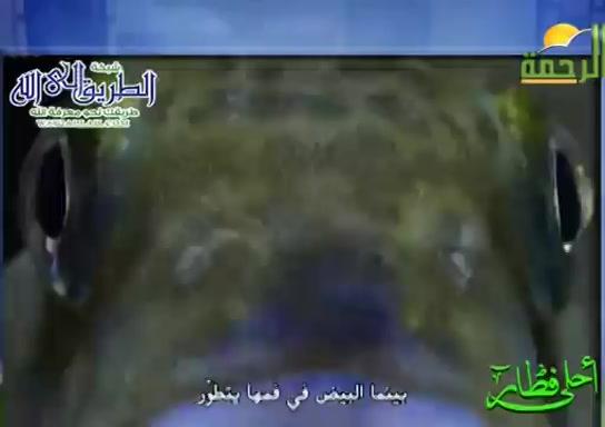 المشطيهالمتسامحه(17/5/2020)احلىفطار