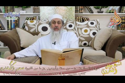(604) الرؤيا الصالحة جزء من ستة وأربعين جزء من النبوة ح 6984 - 6989