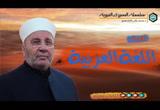 أهمية اللغة العربية - السيرة النبوية