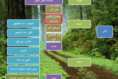 الطريق إلى علم أصول الفقه14 - الأمر- نظري تطبيقي