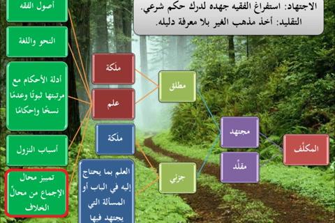الطريق إلى علم أصول الفقه28 - الاجتهاد والتقليد والتعارض والترجيح  - نظري تطبيقي