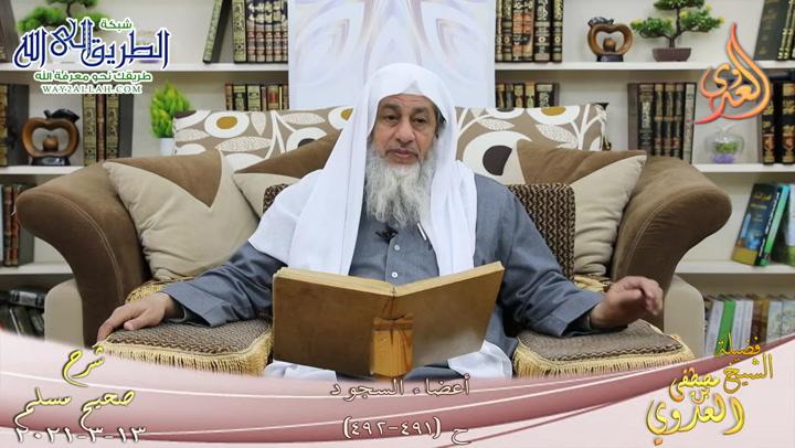 شرح صحيح مسلم -267- أعضاء السجود ح -491-492- 13 3 2021