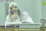 مابين صلح الحديبية وفتح مكة