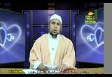 الأندلس ... عِبَر وعبرات (2) (13/4/2010) نبضات شاعر