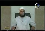 سيدنا سليمان والهدهد (2010-8-13) القصص القرانى