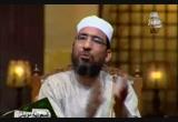 سورة النصر (2/9/2010) الكتاب الكبير
