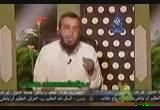 اللغة العربية (فى دائرة الضوء)