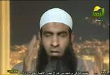 حول أحداث مصر 2011 (20/2/2011)