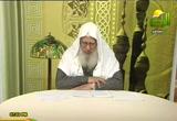 باب في التفضيل (9/4/2011) شرح سنن أبي داود (كتاب السنة)