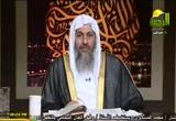 المرأة في الإسلام (28/4/2011) أحكام النساء
