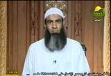 رسالة إلى النخبة ( 24/7/2011) رسالة إلى
