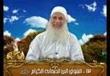 الشوق إلى الصحابة الكرام (دورة المشتاقون إلى رمضان)