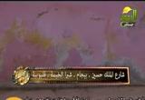 السهم (11/11/2011)