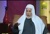 آمال وآلام الأمة المصرية (31/12/2011)