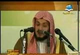 حبيبنا صلى الله عليه وسلم (31/12/2011) محاضرة اليوم