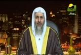 قصة نبي الله إبراهيم (3) (10/5/2012) قصص الأنبياء