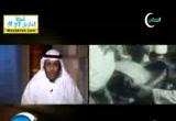 أبناء البادية (7/8/2012) صفحات