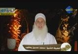لا ينبغى لك أن تسأل_جزء 2 (21/7/2012) حلاوة وطلاوة