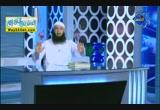 الأساليب النبوية لحل المشكلات الزوجية 2 (11/8/2012) عشرة النساء