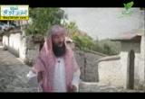 الأئمة الأربعة (31/7/2012) مشاهد 3