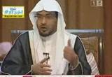 الفلاح والخيبه (   10/8/2012  )مع القرآن 4