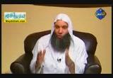سيرة على بن ابى طالب ج 1 ( 5/9/2012 ) فاستقيموا اليه