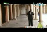 جامع الزيتونة _ وتبقى تونس خضراء