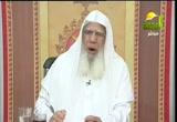 الإيمان بالأنبياء والرسل (15/9/2012) شرح سنن أبي داود (كتاب السنة)