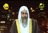 قصة نبي الله يوسف 3 (27/9/2012) قصص الأنبياء