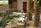 جلوس النبي مع أصحابه (2/8/2012) اليوم النبوي