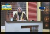 الواقع المعاصر ( 17/12/2012 ) فضفض مع الشيخ