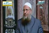 اهلابدستورمصرالجديد(22-12-2012)لقاءخاص