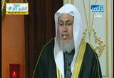 تهنئة الشيخ سيد البشبيشي والشيخ هاشم اسلام بمناسبة تحديث قناة الخليجية(27-12-2012)لقاء خاص