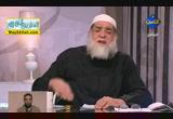 نظرات شرعية للرد على الشبهات الحالية ( 31/12/2012 ) فضفضة