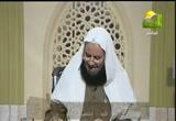 فتاوى( 12/11/2012) فتاوى الرحمة