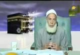 نتائجالهجرةالىالحبشة(12/8/2008)السيرةالنبوية