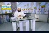انا فتحنا لك فتحا مبينا ( 8/2/2013 ) نبض القران