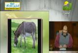 الكلام في الحيوان(13-2-2013) الحيوان في القرآن